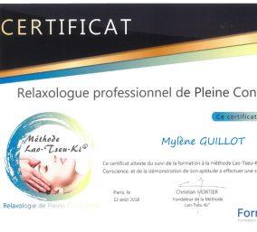 Relaxologie de pleine conscience et Magnétisme EBEME : relaxologie_certificat