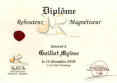 Formation Magnétiseuse_Rebouteuse Mylène GUILLOT